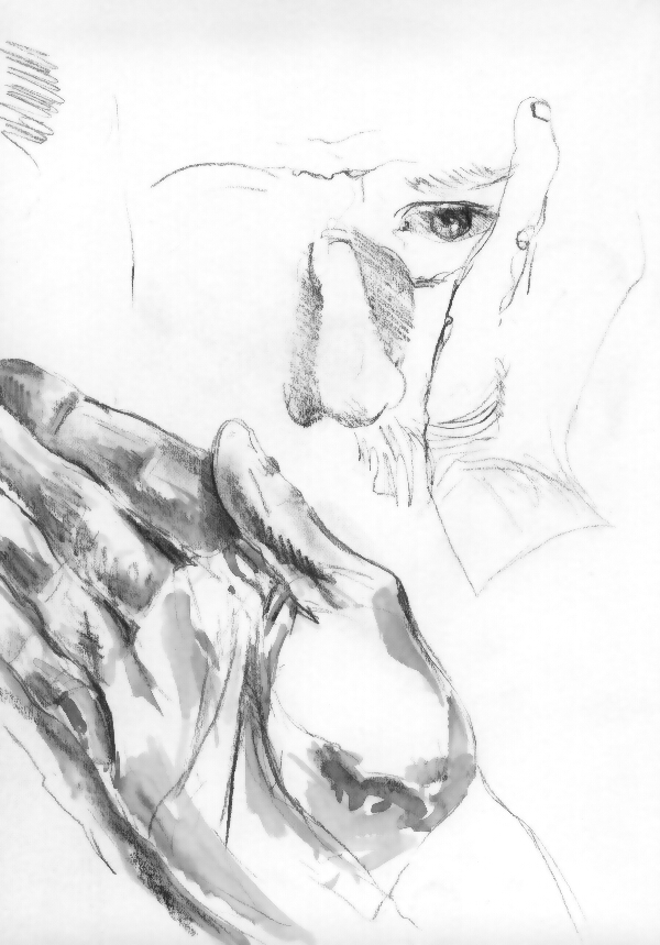 David6-1